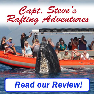 Captain Steve's Rafting Review