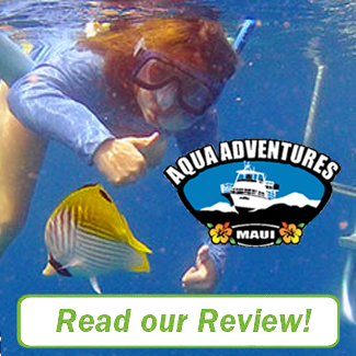 Aqua Adventures Review