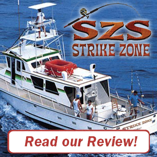 Strike Zone Review