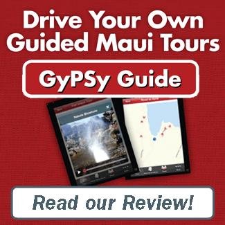 GyPSy Guide Review