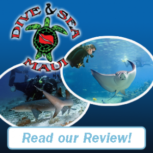 Dive & Sea Review