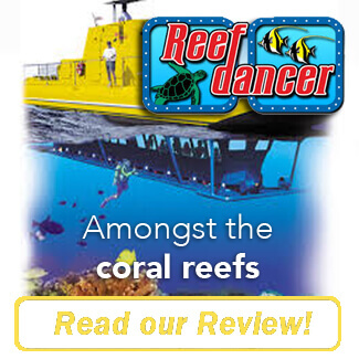 Reef Dancer Review